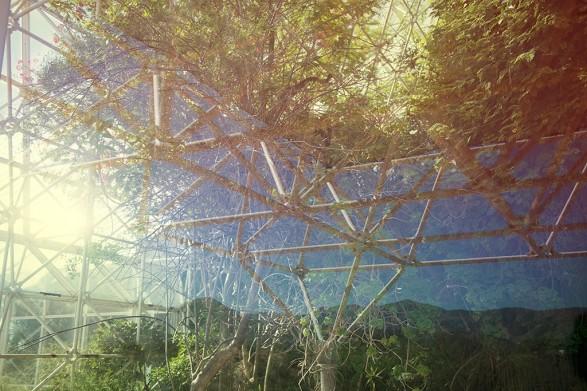Biosphere 2 - image 3