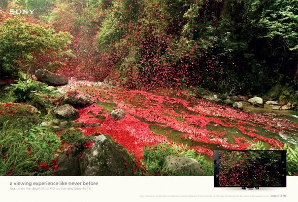 Sony Bravia River1 587x399 Sony Bravia