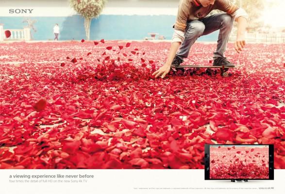 Sony Bravia Skater1 587x399 Sony Bravia