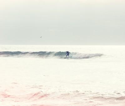 SurferOne